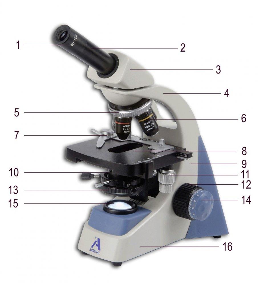 popis-mikroskopu